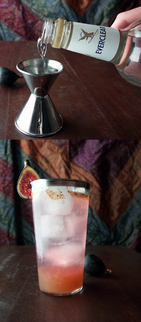 Fig and Tonic Cocktail with Everclear // stirandstrain.com